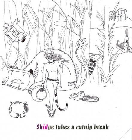 Catnip Break