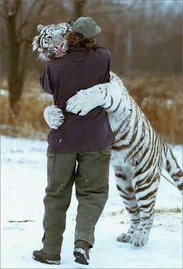 Huggles
