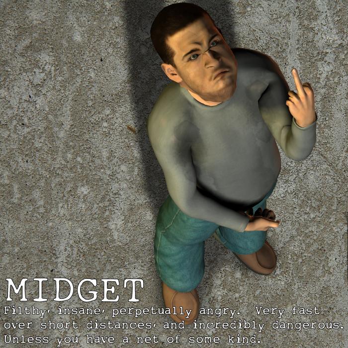Race Image - Midget